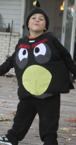 Angry Bird Costume for Kids