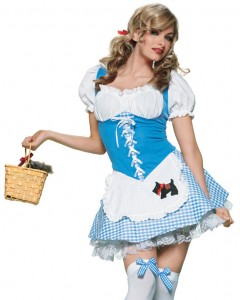 Dorothy of Wizard of Oz Costume