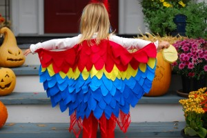 Parrot Wings Costume