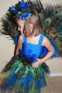 Peacock Costume Kids