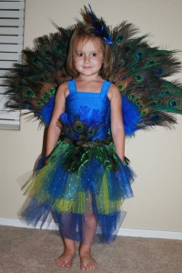 Peacock Costumes for Kids