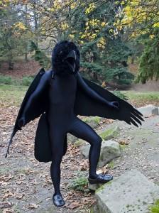 Raven Costumes