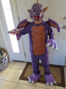 Skylander Costumes for Kids