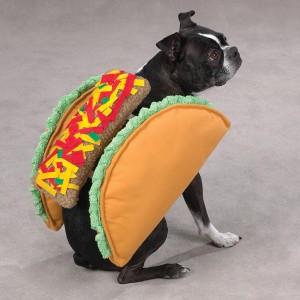 Taco Dog Costume