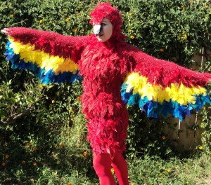 Womens Parrot Costume