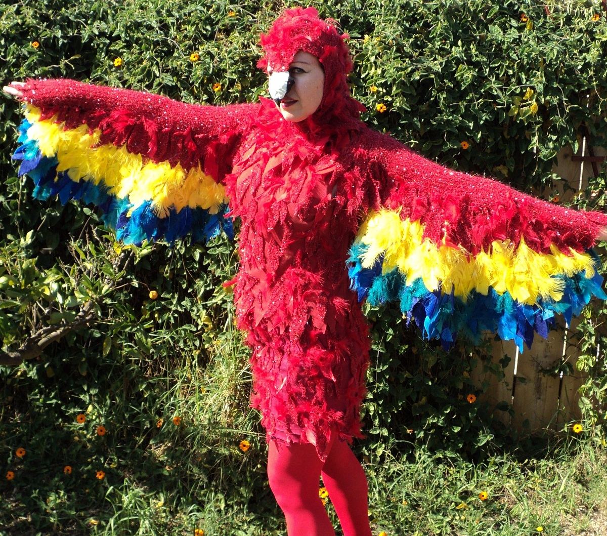 Parrot Costumes Costumes Fc