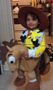 Toy Story Bullseye Costume