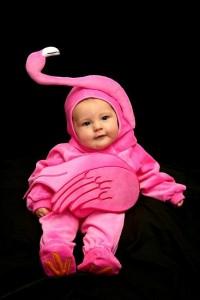 Baby Flamingo Costume