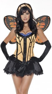 Butterfly Costume Adult