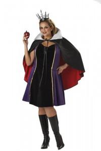 Evil Queen Adult Costume