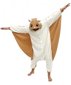 Flying Squirrel Costume