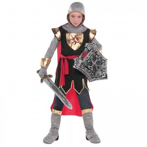Knight Costume for Boys